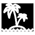 Palm trees@2x